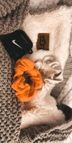 The newest trends of 2019 which are impacting the world like Airpods,wireless  making your life easier. Scrunchies could be the cost of 2 dollars to 200 dollars and has been trend for nine months in 2019.