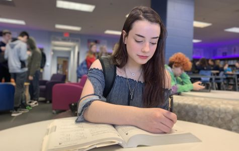 "Students avoid stress for the ACT through preparation; 45.1 percent of Lemont juniors report using self-study prep books. ""Getting ready for the ACT can be a stressful time of year, but I try to alleviate the pressure by using my test prep book,"" said junior Chloe Kwasigroch."